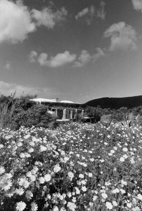 Barone - Pantelleria