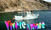 Vivere il mare - Vivere il mare - Vi invita a partecipare ad un'indimenticabile giornata nelle acque di Pantelleria, navigando sotto le scogliere a strapiombo, tra gli scogli semi sommersi, sulle acque verdi delle calette e al largo, ad ammirare i morbidi contorni d'insieme, nelle acque blu, accompagnati nella storia della genesi dell'isola, scritta nei profili e nella natura.