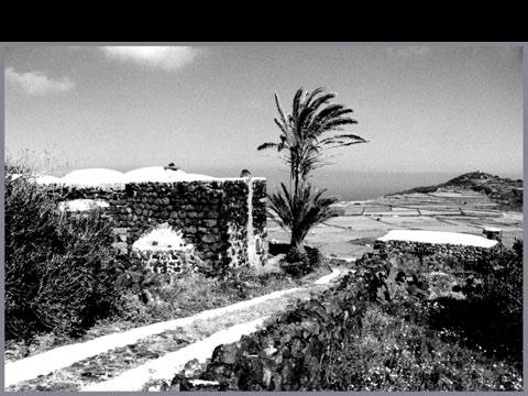 Isola di Pantelleria - Muegen.