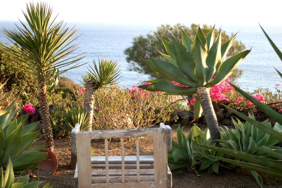 Il giardino del dammuso.