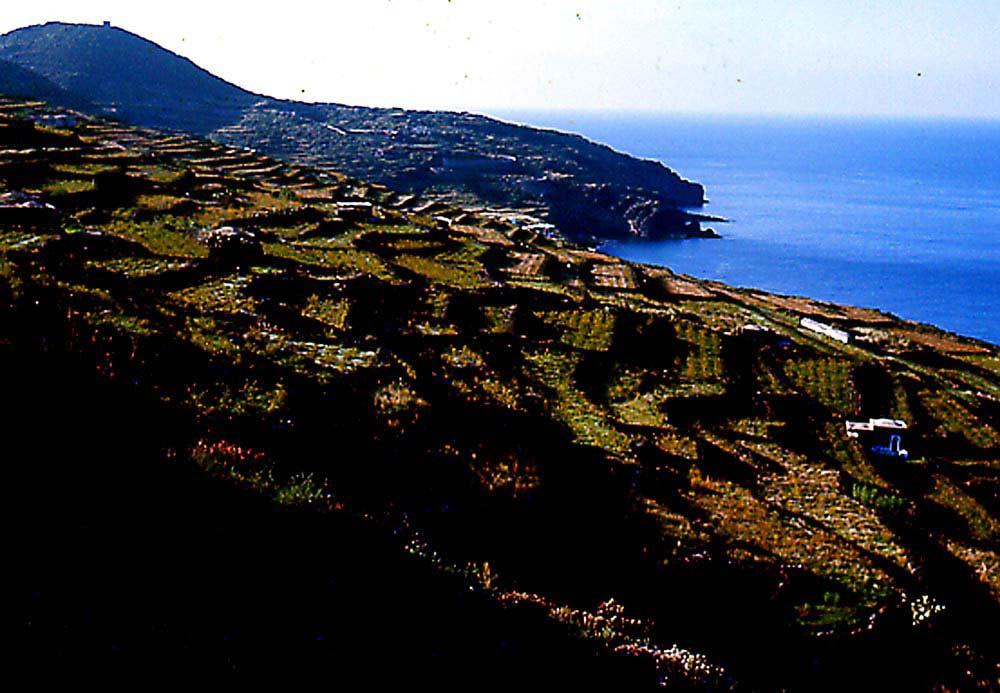 Pantelleria - Autunno in contrada Gadir