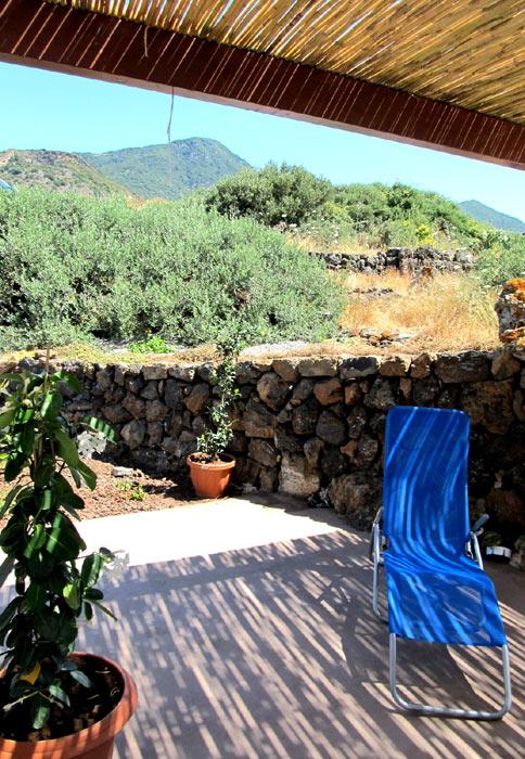 Intorno al dammuso dei alberi di olivi e in fondo...